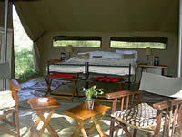 A typical camping safari tent.