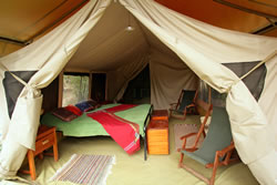 A double tent at JK Mara Camp. Copyright Bill Gozansky